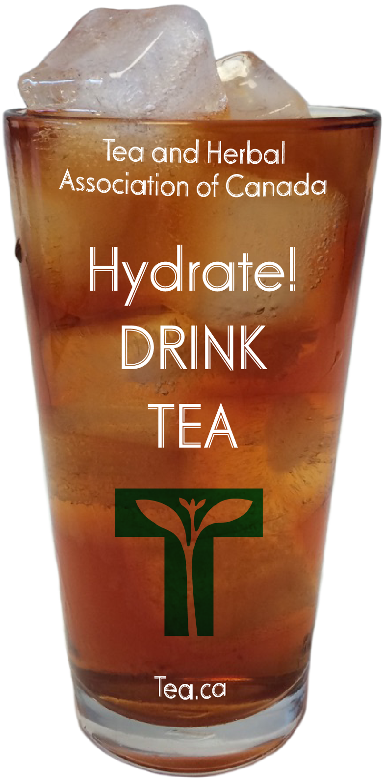 Hydrate! Drink Tea!