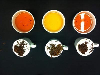 Comparative Tasting India Teas