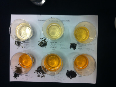 Comparative Tasting test