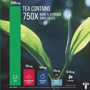 Tea for Life Flavonoids