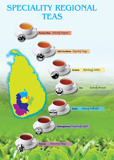 Tea regions in Sri Lanka